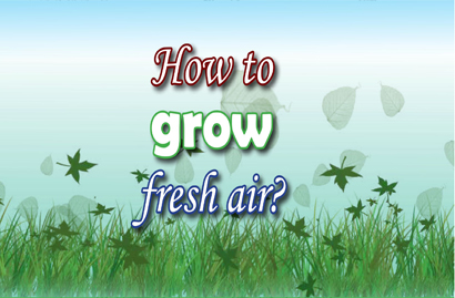 How to grow fresh air?